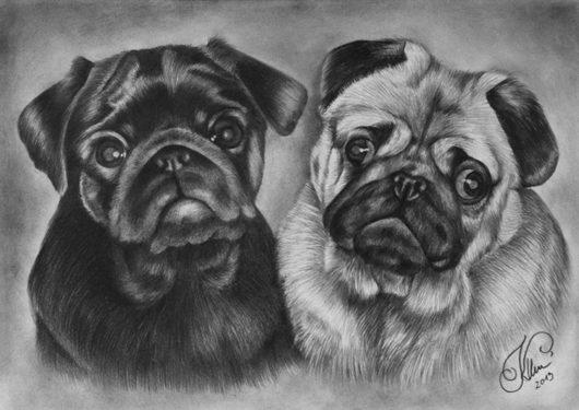 Kadriart portree joonistused ja illustratsioonid Portreejoonistus-47-e1481286013292