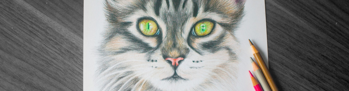 Kadriart portree joonistused koduka-blogi-kujundus-1