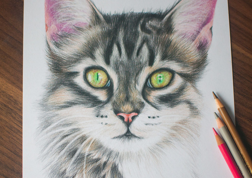 Kadriart portree joonistused ja illustratsioonid 333-1024x724