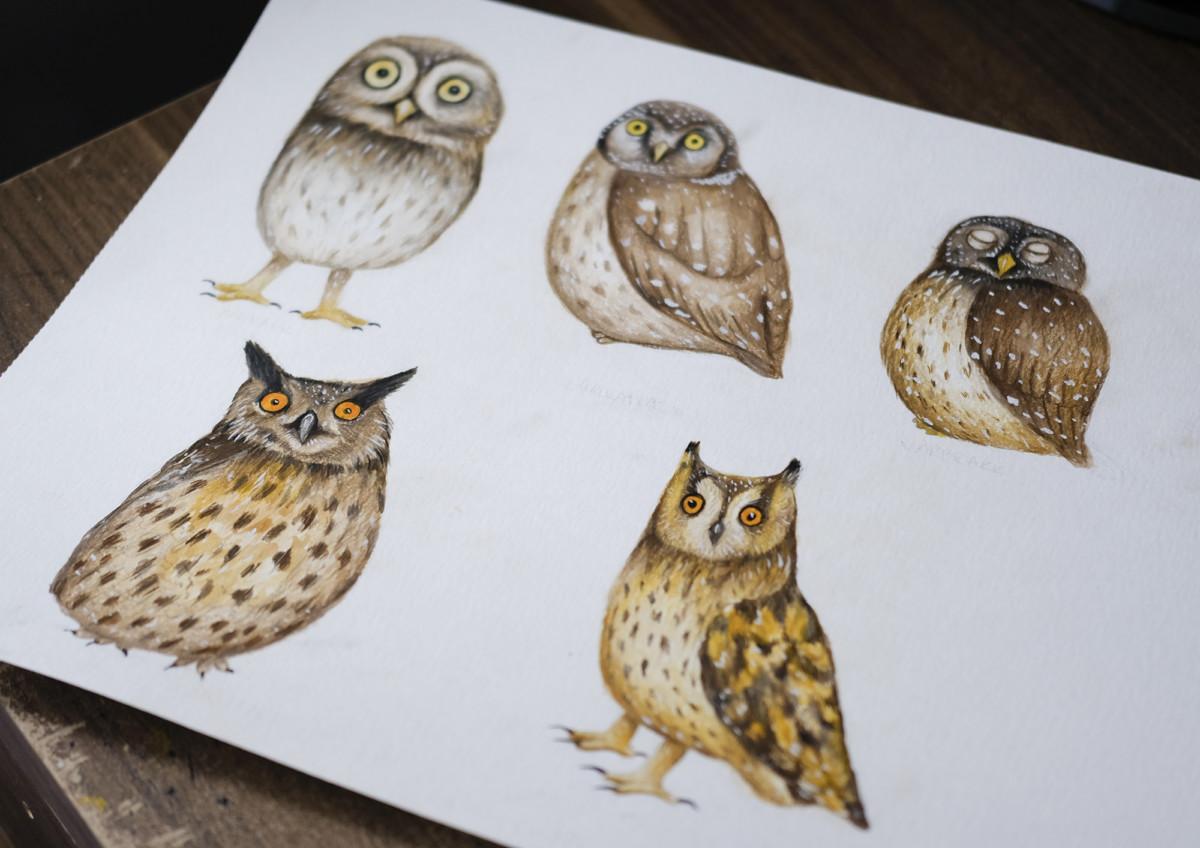 Kadriart portree joonistused ja illustratsioonid Kadri-Võsumäe-illustratsioonid-13
